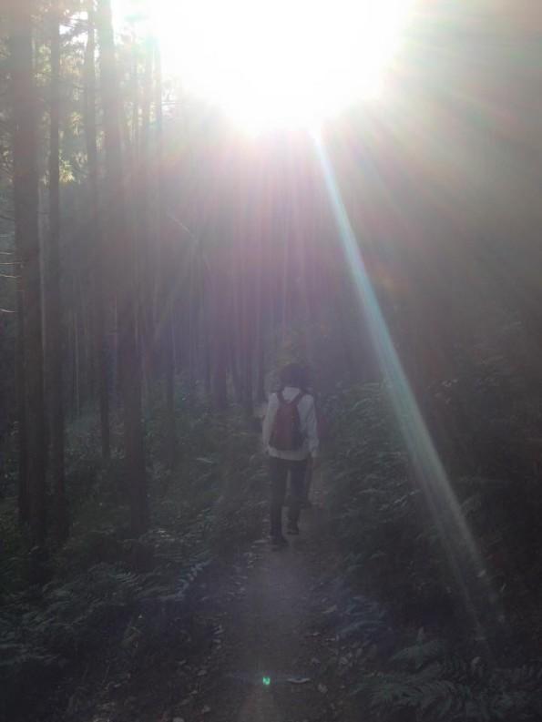 mei山5